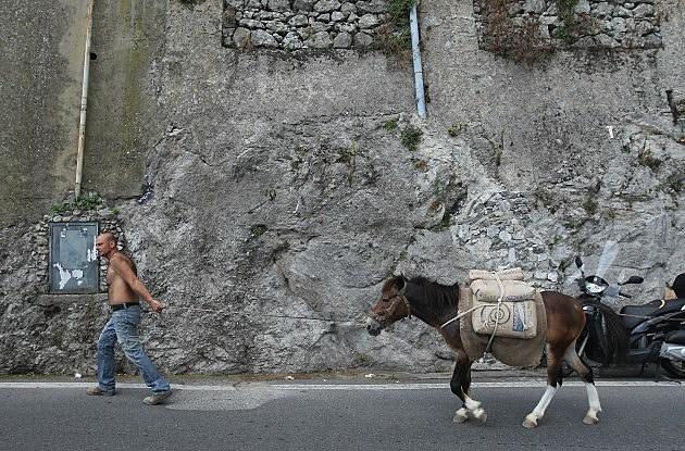 Man pulling donkey