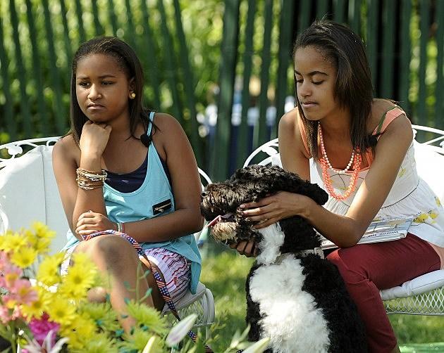 Obama Family Dog