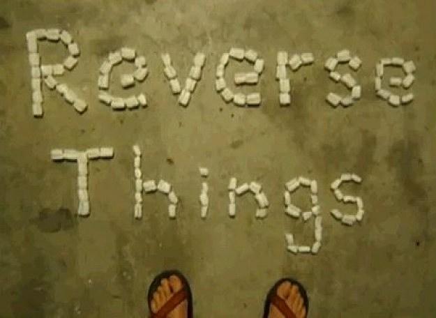 Reverse Things