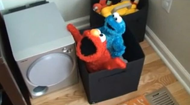 Elmo and Cookie Monster have some Adult Fun. The YouTube video says: ...