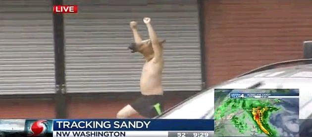 Hurricane Sandy Zombie Live Hurricane Sandy Reports