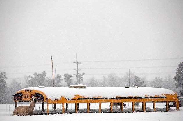 Snow School Bus